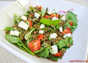 Lentil and goats cheese salad