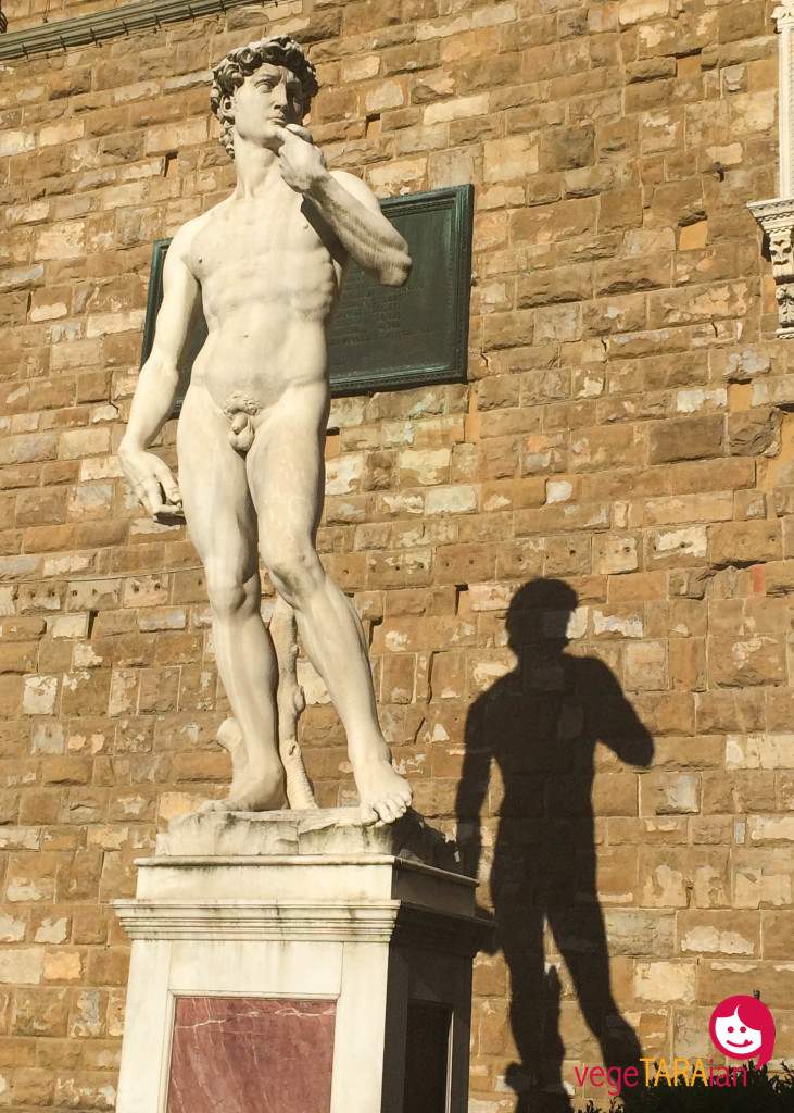 David in Florence