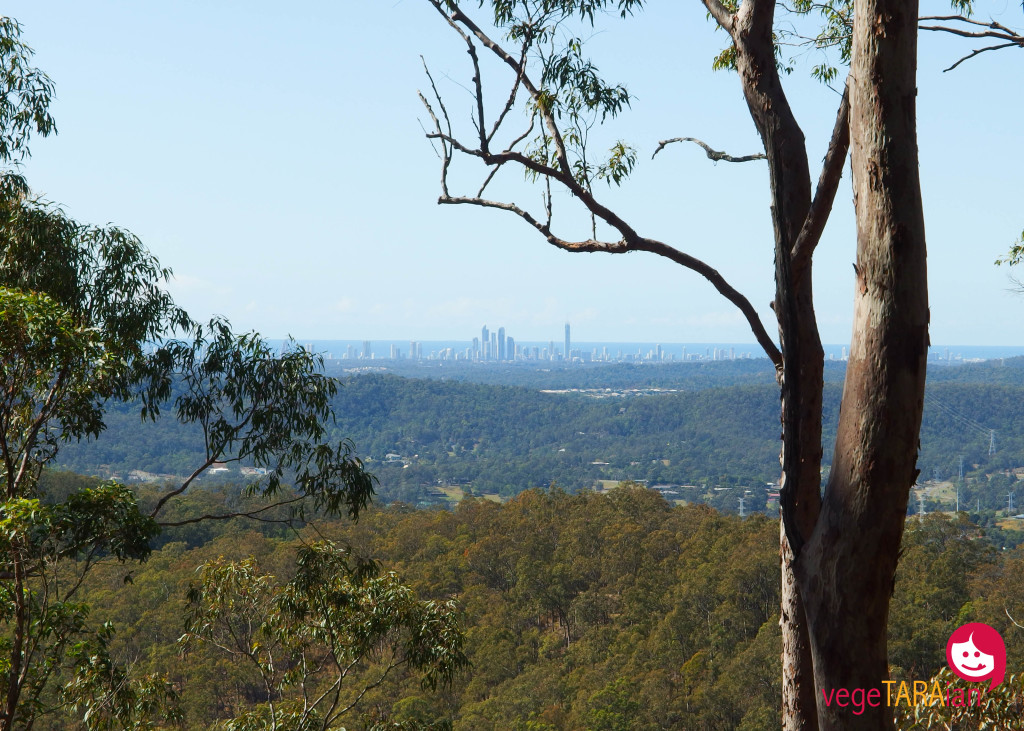 View from Mount Tamborine