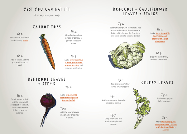 Reducing waste in the kitchen