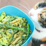 Chili bear with pasta genovese and asparagus