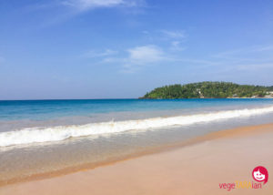 Why I love Sri Lanka's Mirissa