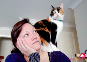 Cats, spring and being a responsible pet owner