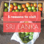 5 reasons to visit Sri Lanka