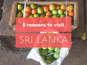 5 reasons to go and explore Sri Lanka